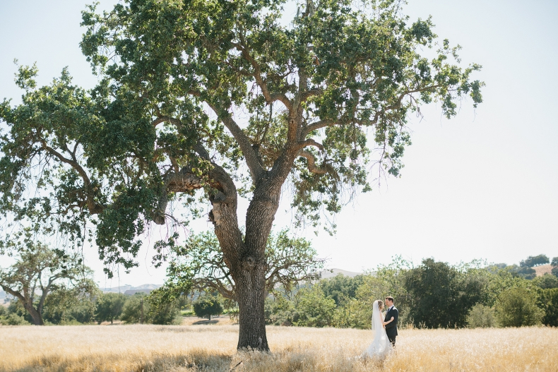 A bride and groom portrait by a large tree.