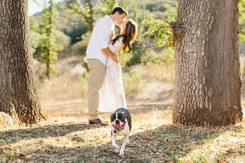 A photo of the dog with the couple kissing in the background.