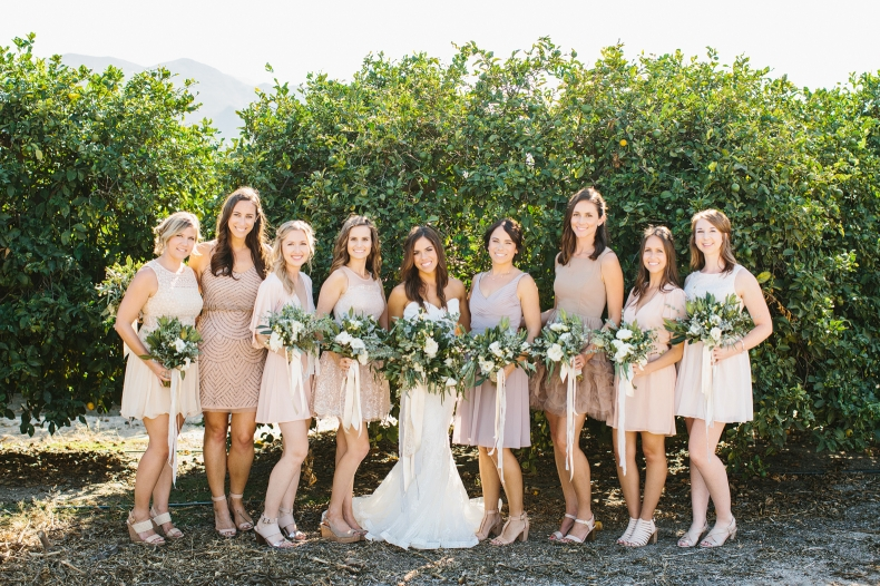 A photo of the bride and bridesmaids.