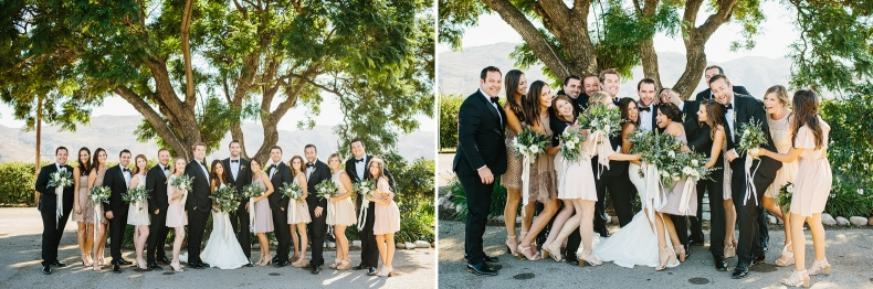 Full wedding party photos in front of a tree.