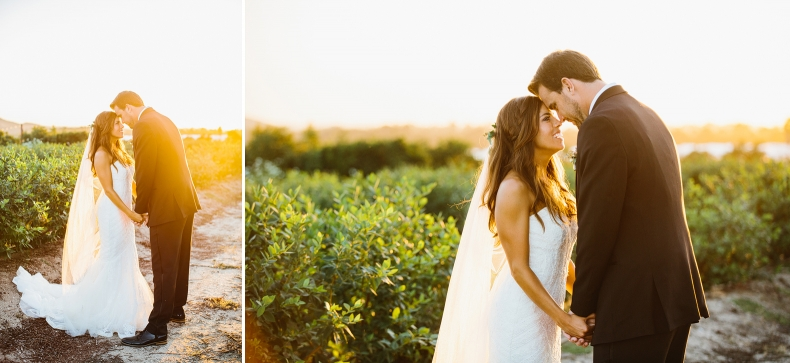 Sweet photos of the couple at sunset.