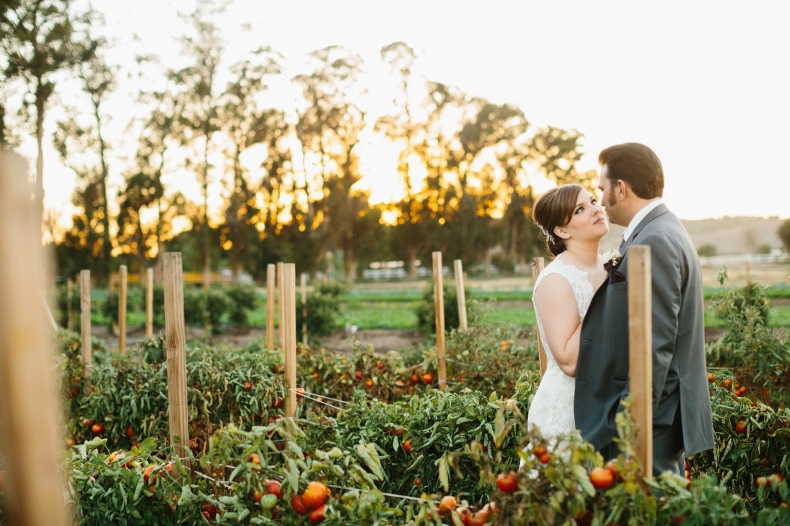 The couple surrounded by tomato vines.