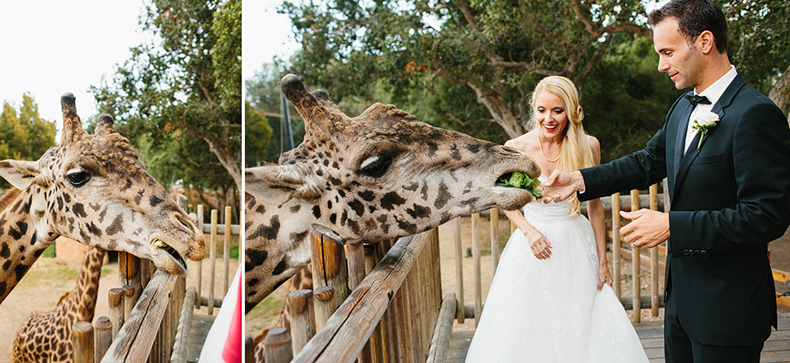 Santa Barbara Zoo Wedding Photography