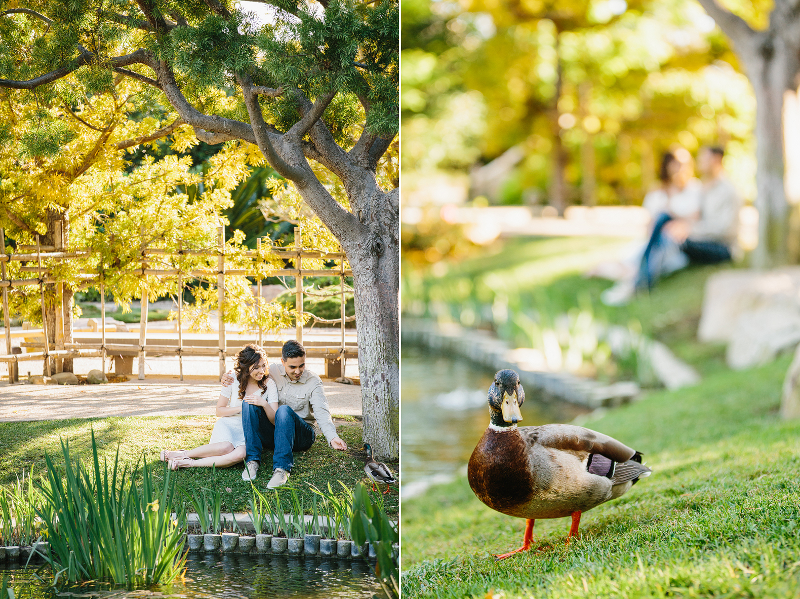 Cal State Long Beach Engagement: Theresa + Alex - Marianne Wilson ...